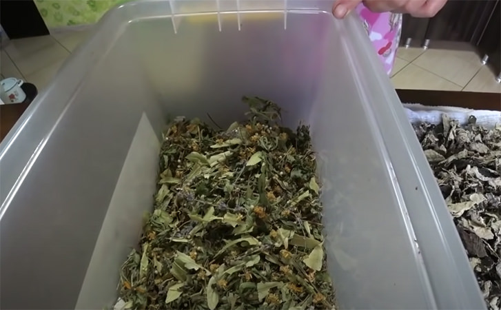 Чай з листя малини на зиму. Готуємо листя в банку і зберігаємо весь смак