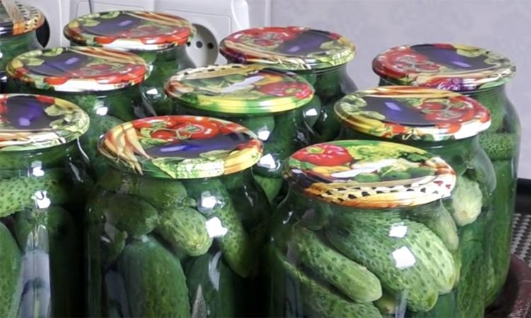 Маринуємо огірки з гірчицею. З нею взимку буде більше смаку і аромату