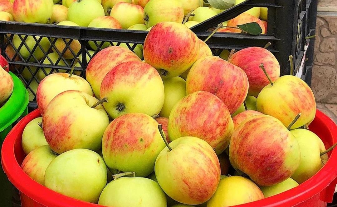 Яблучний джем на зиму: смачний, перевірений рецепт до випічки